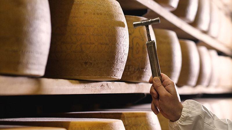 La Storia del Parmigiano Reggiano