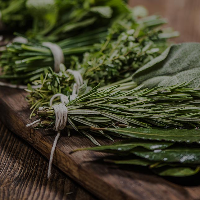 SKS Showroom Milano_Aromatic herbs